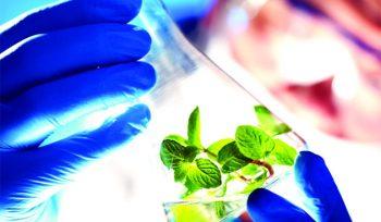 International Conference On Biotechnology & Nanotechnology